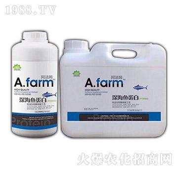 深海鱼蛋白系列-阿法姆1号原液-海法