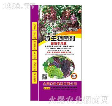 葡萄专用微生物菌剂-中农