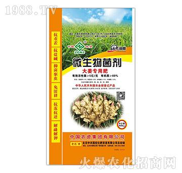 大姜专用微生物菌剂-中农
