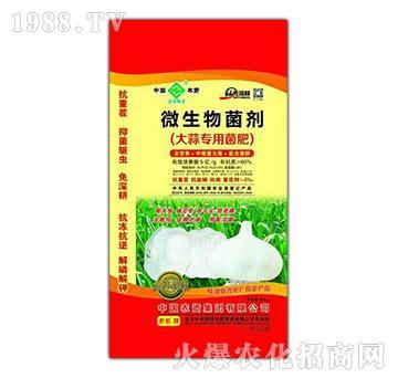 大蒜专用微生物菌剂-中农