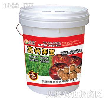 高钙钾宝马蹄芋头专用-
