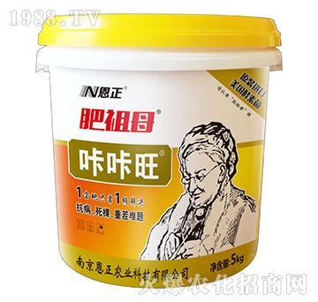 咔咔旺-肥祖母-恩正