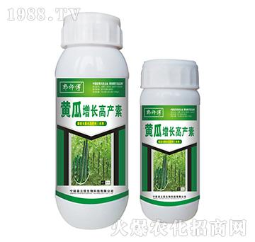黄瓜增长高产素-郭师傅