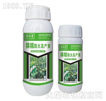 棉桃膨大高产素-郭师傅-立信生物