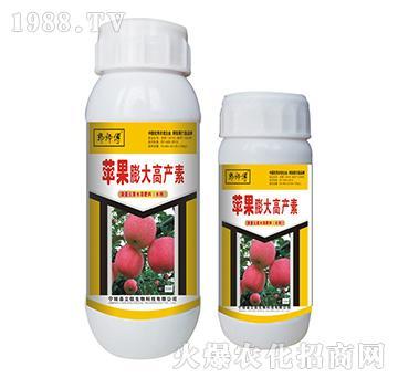 苹果膨大高产素-郭师傅-立信生物