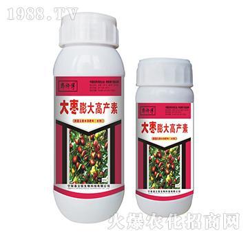 大枣膨大高产素-郭师傅-立信生物