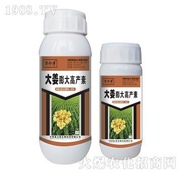 大姜膨大高产素-郭师傅-立信生物