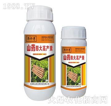 山药膨大高产素-郭师傅-立信生物