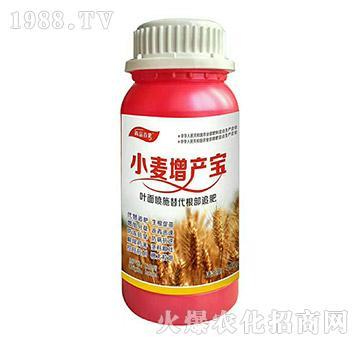 小麦增产宝-尚品百果