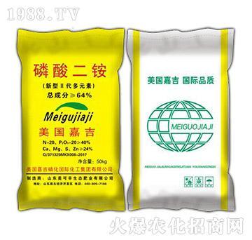 磷酸二铵-盛高肥业