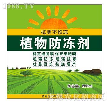 植物防冻剂-绿冠