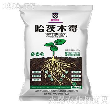 哈茨木霉(袋)-微生物菌剂-雷克邦斯