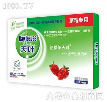 草莓专用叶面肥-德默尔天叶