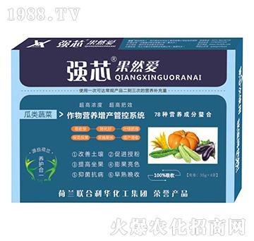 瓜类蔬菜专用强芯果然爱叶面肥-强芯国际