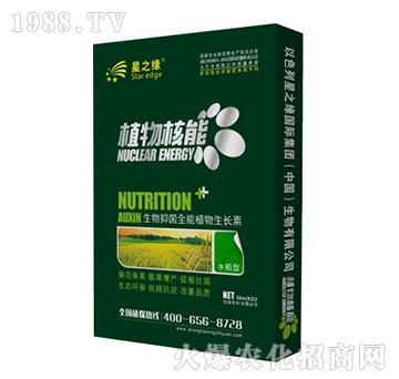 水稻型-植物核能-星之�