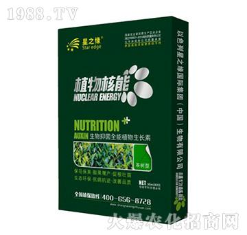 茶�湫�-植物核能-星之�