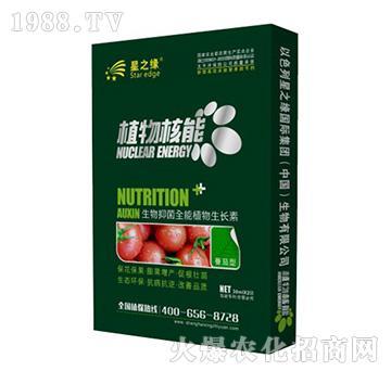 番茄型-植物核能-星之