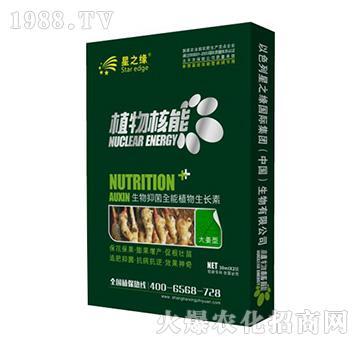 大姜型-植物核能-星之�