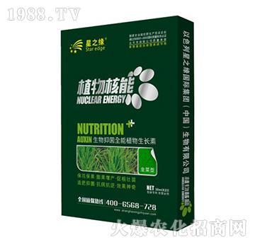 韭菜型-植物核能-星之�