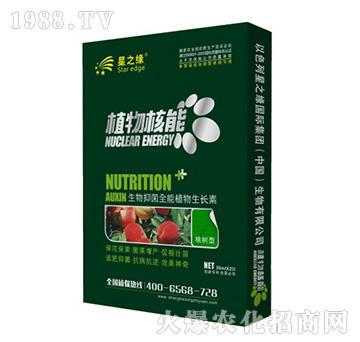 桃�湫�-植物核能-星之�