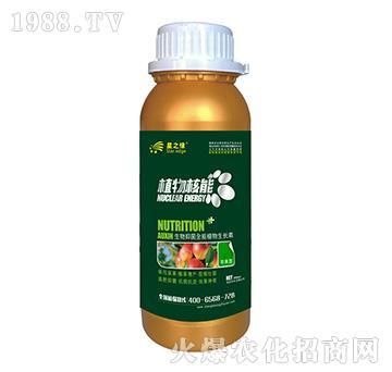 �O果型-植物核能300