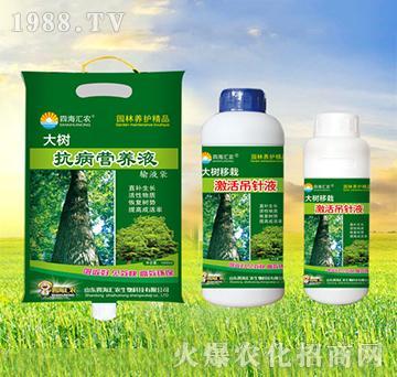 大树抗病营养液+大树移
