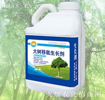 大树移栽生长剂-四海汇