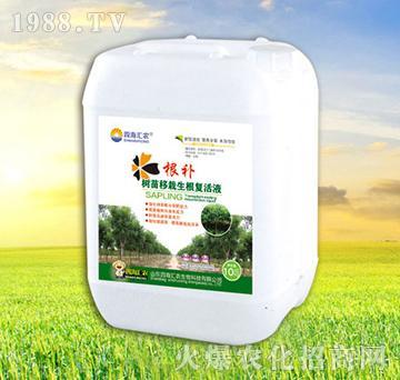 树苗移栽生根复活液-根