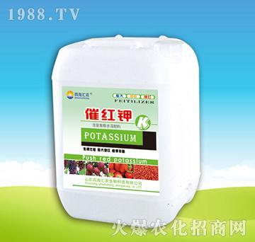 催红钾-四海汇农
