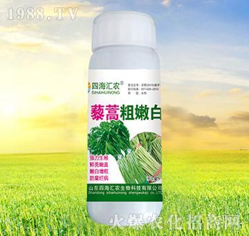 藜蒿粗嫩白-四海汇农