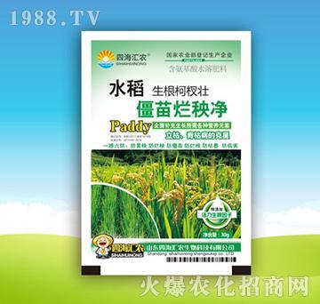 水稻僵苗烂秧净-四海汇