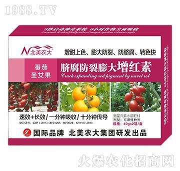 番茄圣女果脐腐防裂膨大