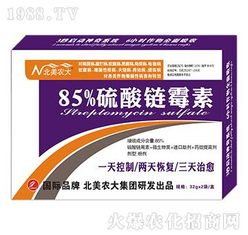 85%硫酸链霉素-北美