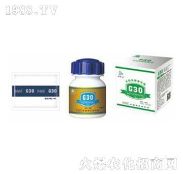 G30水稻类粮食作物专