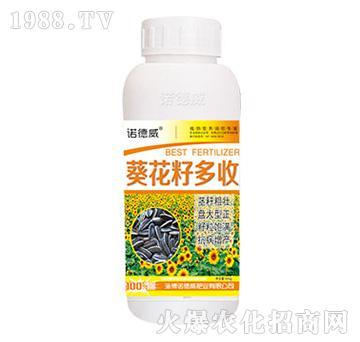 葵花籽多收-诺德威