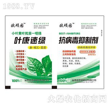 叶康速绿+抗病毒抑制剂