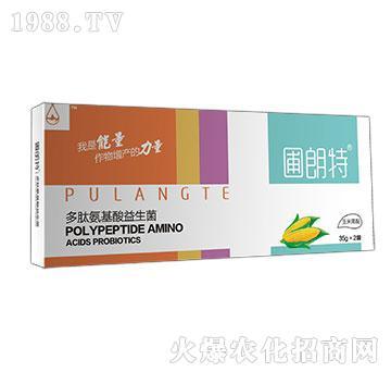 玉米需配-多肽氨基酸益