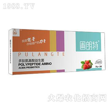 草莓需配-多肽氨基酸益