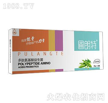 豆类需配-多肽氨基酸益生菌-圃朗特