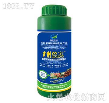 花椒专用-高浓缩螯合植