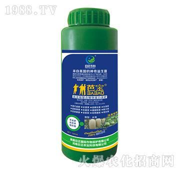 瓜类专用-高浓缩螯合植