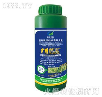 小麦专用-高浓缩螯合植