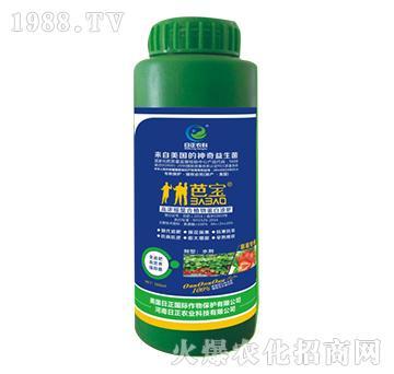 草莓专用-高浓缩螯合植
