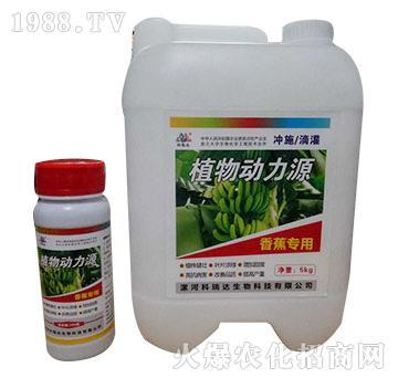 香蕉专用-植物动力源-