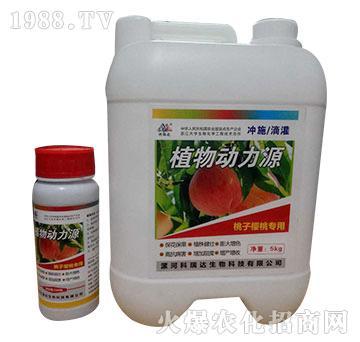 桃子樱桃专用-植物动力