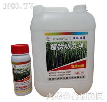 甘蔗专用-植物动力源-