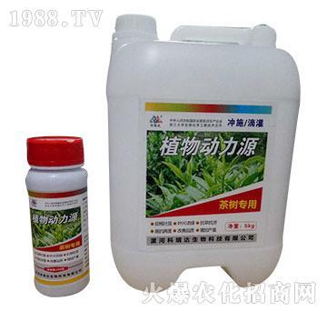 茶树专用-植物动力源-