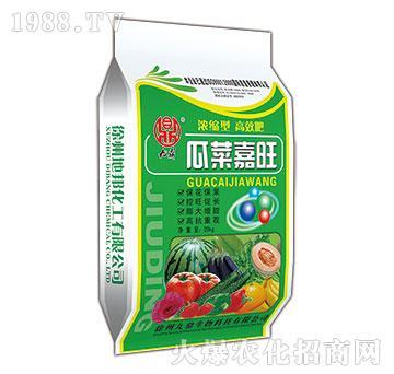 瓜菜嘉旺-九鼎-地邦泉