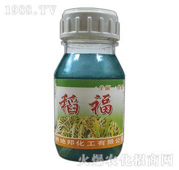 稻福(瓶)-地邦泉