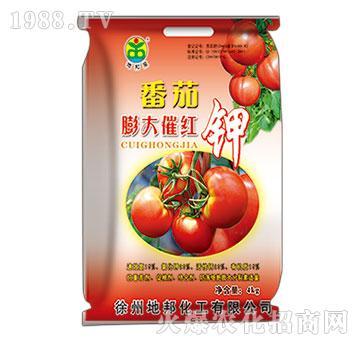 番茄膨大催红钾-地邦泉